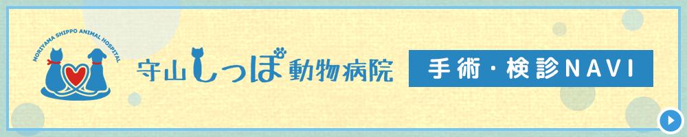 守山しっぽ動物病院手術・健康診断専門サイト